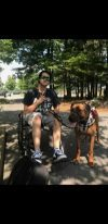 New Service Dog Comes to NKHS